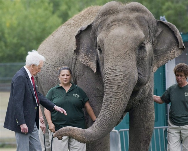 Bob Barker meets Lucy the elephant at Edmonton's River Valley Zoo on September 17, 2009.