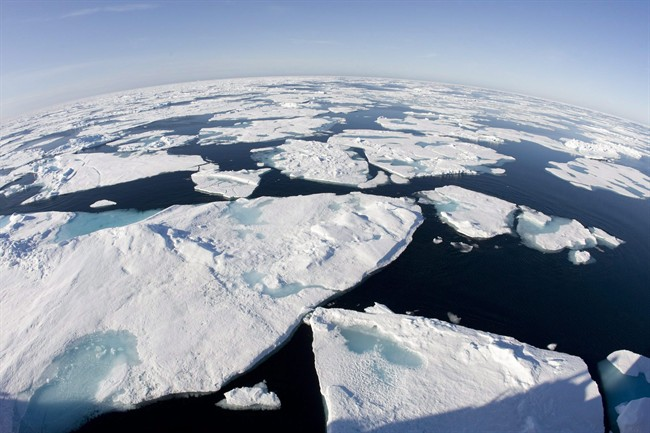 Canada must work quickly to put the policies in place necessary to combat climate change, an expert warns.