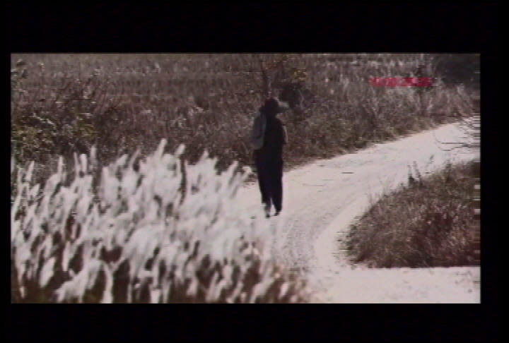 Documentary shines light on Chinese-Canadian experience - image