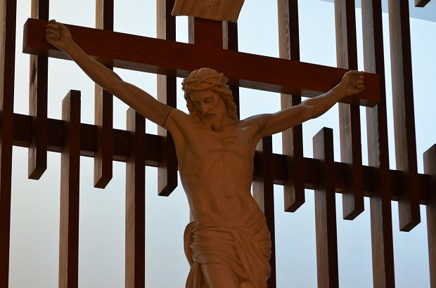 Roman Catholics remain the single largest Christian religious group in Canada, according to the first set of numbers released Wednesday from Statistics Canada's 2011 National Household Survey, the voluntary replacement for the cancelled mandatory long-form census.