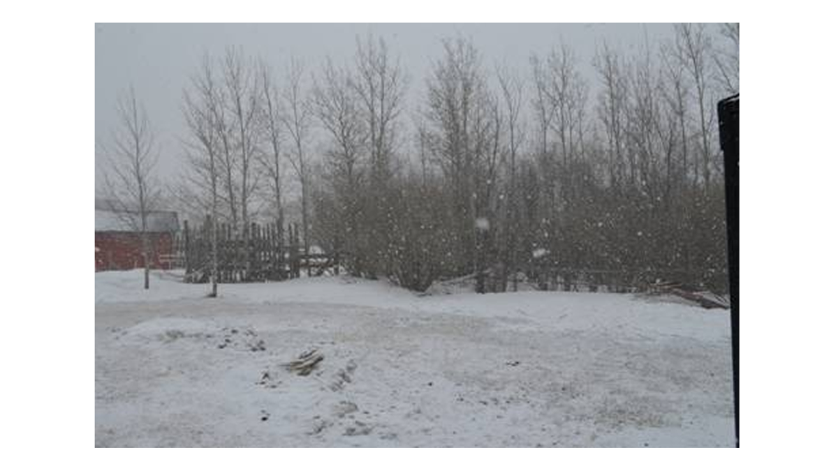 More flurries for parts of central Manitoba.This was taken today at 12:00pm in Erickson.