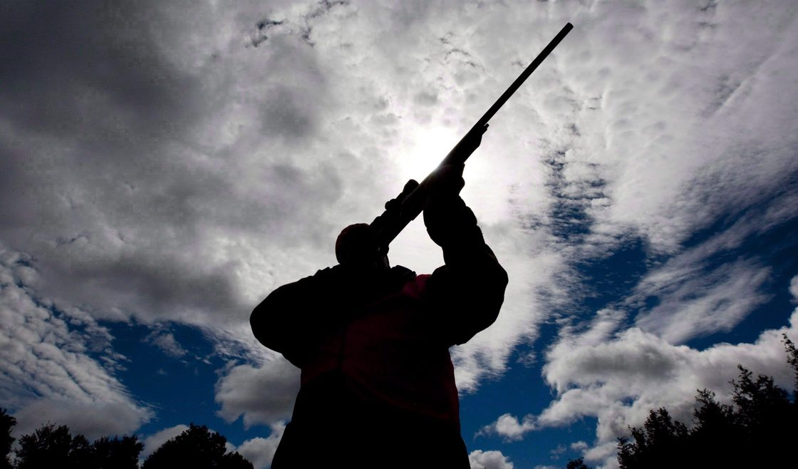 Saskatchewan's privacy commissioner is currently investigating a possible security breach involving the province's hunting, angling, and trapping licence system.