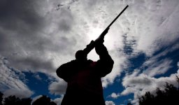 Continue reading: Saskatchewan privacy commissioner investigates potential breach of hunting licensing system