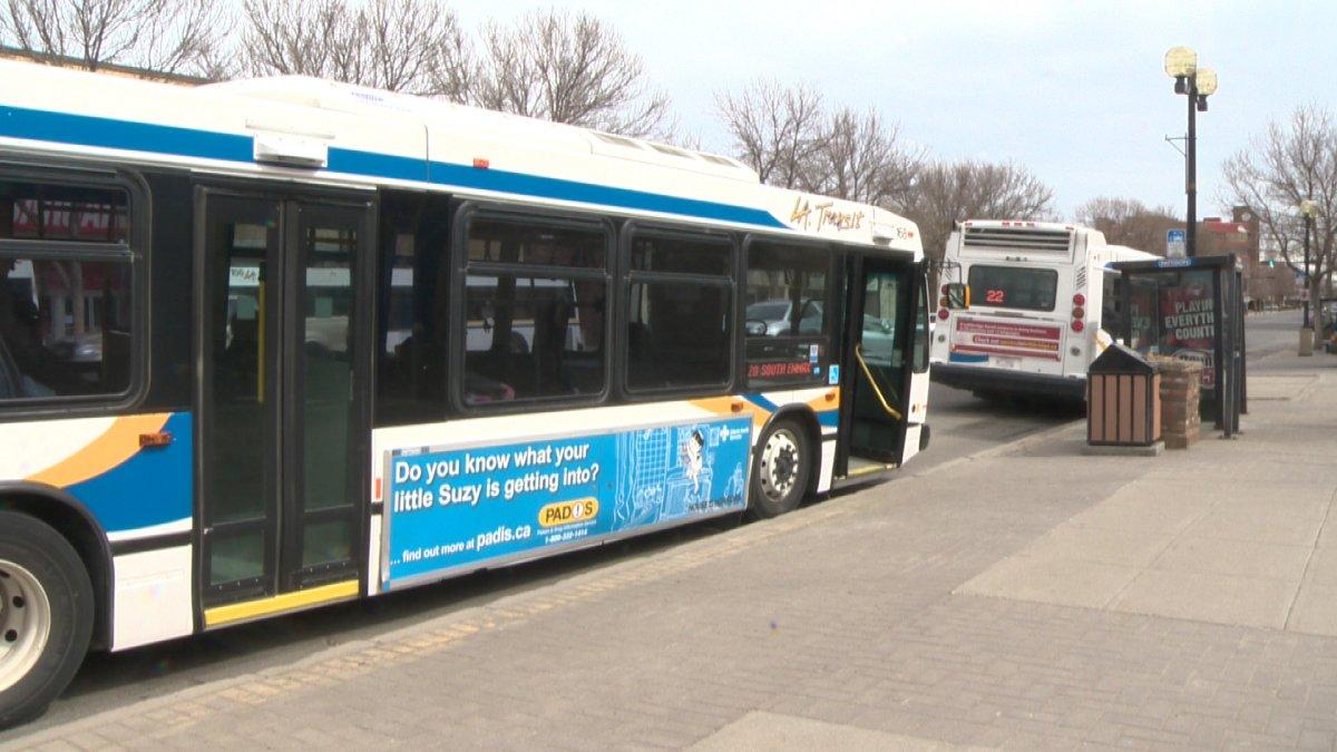 Lethbridge Transit buses parked at the downtown terminal.