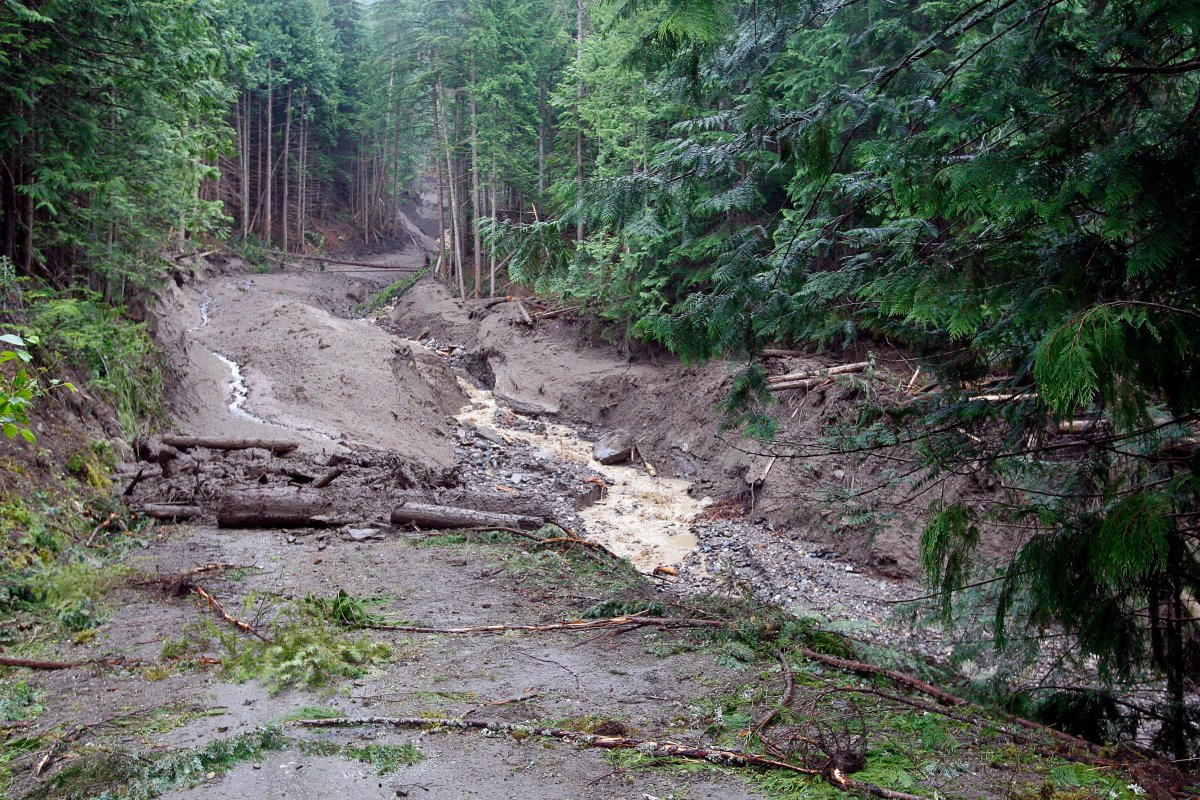 Debris covers a road Sunday, July 15, 2012 that was torn away by a landslide that buried three homes and has left four people unaccounted for in Johnsons Landing, B.C. THE CANADIAN PRESS/Jeff McIntosh.