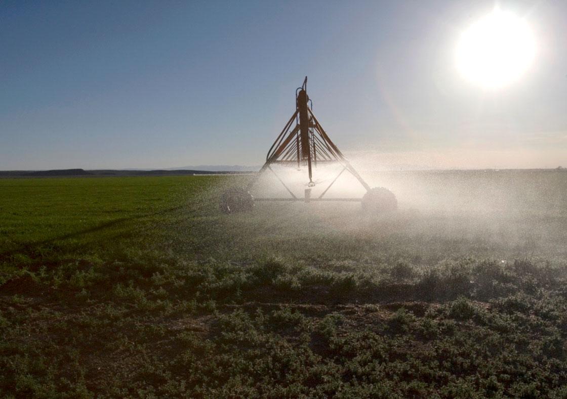 Federal, Saskatchewan governments splash out $65 million to quench farm irrigation needs.