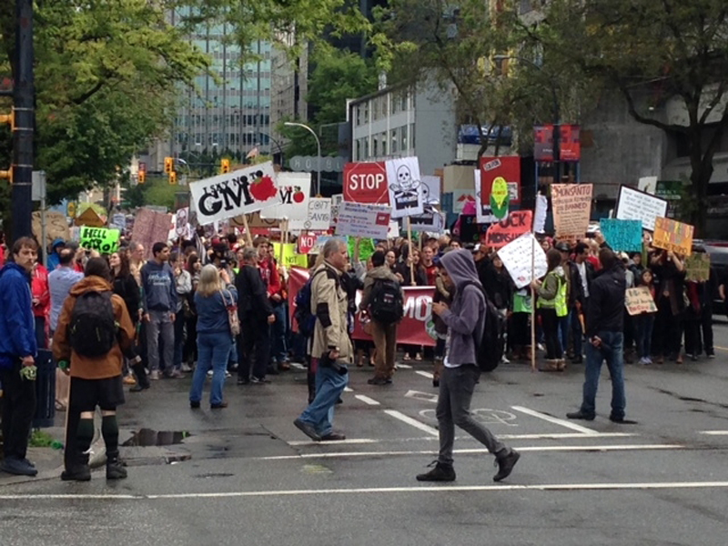 Hundreds of people gathered in downtown Vancouver in May to protest genetically modified food and biotech company Monsanto. Credit: Nick Logan/Global News.