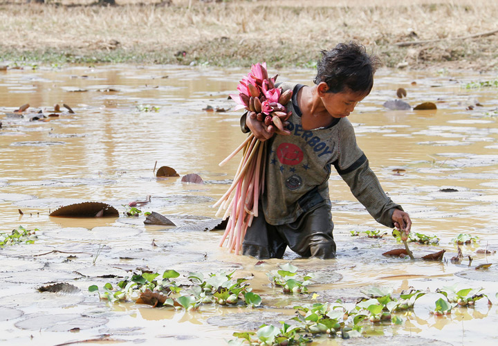 According to World Vision, the majority of child labourers work in the agriculture sector, which includes fishing, forestry, livestock herding and aquaculture.
