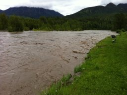 Continue reading: Teck Coal given record-breaking $60M fine for contaminating BC rivers