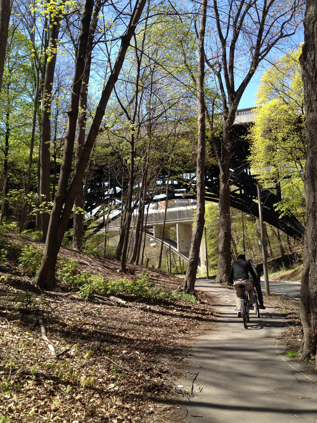 On Thursday July 18, 2013, Toronto city council approved a multi-use cycling and pedestrian path that will connect Toronto from Brampton to Scarborough.