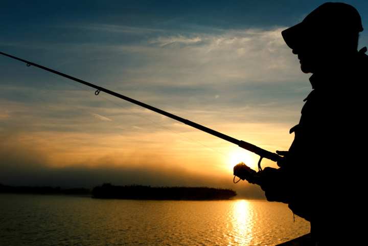 Saskatchewan researcher casting for anglers who can reel in hybrid fish DNA.