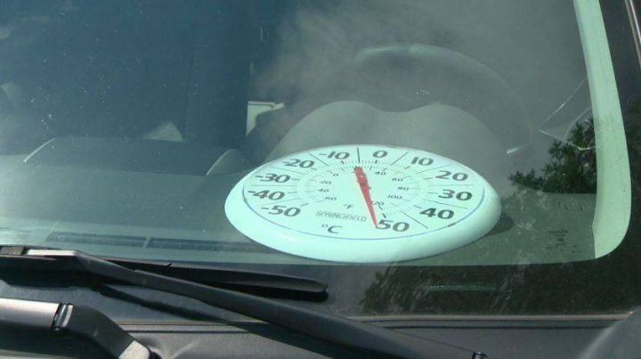 The Edmonton Police Service shows how hot it can get inside a vehicle on a hot day.