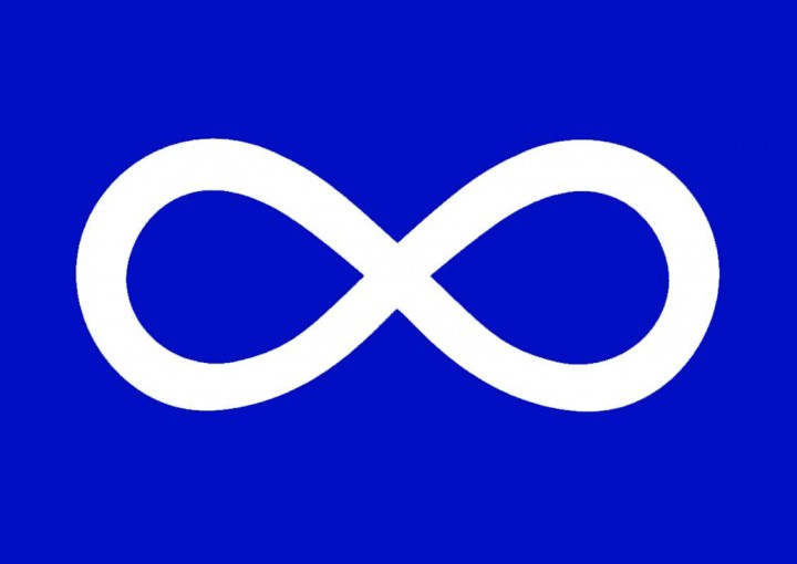 The chief electoral officer appointed by Métis Nation - Saskatchewan has resigned due to health concerns leading council to postpone its general election.