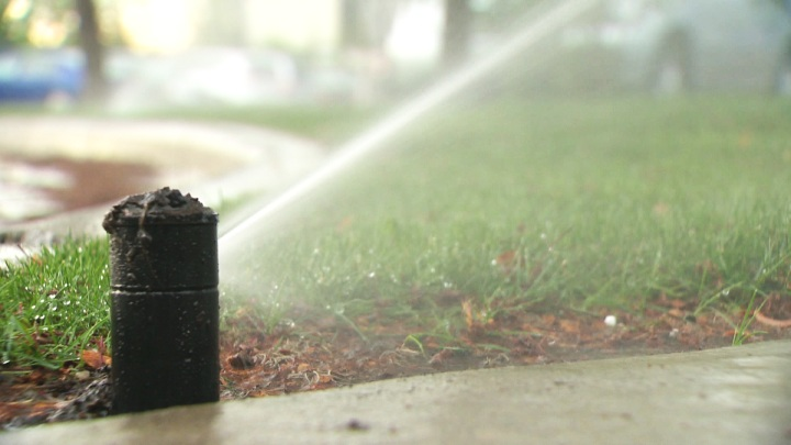 A mandatory outdoor watering ban is currently in place throughout the City of Hamilton.
