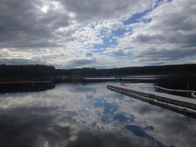 Canadian Natural Resources Ltd. has reported more than two dozen bitumen spills since January 2014.