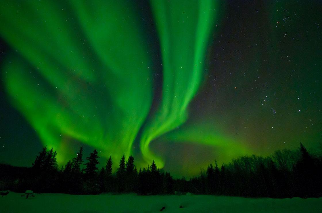 The Northern Lights over Wood Buffalo National Park.