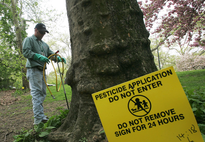 A new audit says the regulator tasked with monitoring pesticide use is allowing harmful chemicals to remain on the market for too long.
