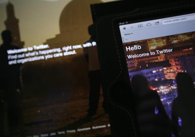 Twitter threats highlight blight of online trolls - image
