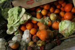 Continue reading: Canada's annual food waste a staggering $31B. Here's how to reduce it