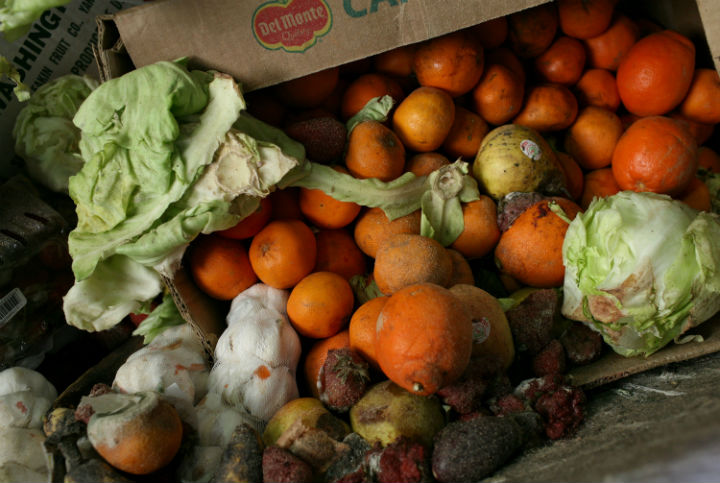 France's parliament has voted to forbid big supermarkets from destroying unsold food, encouraging them to donate to charities or farms instead.