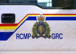 Continue reading: Driver killed after hitting deer south of Medicine Hat