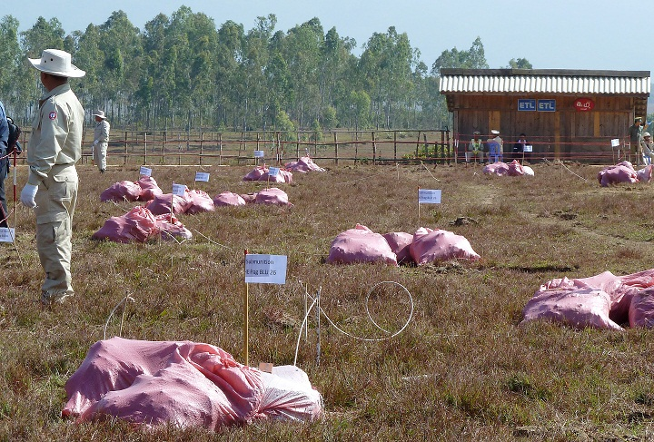 Picture taken on November 8, 2010 shows officials standing among pink bags marking the location of unexploded cluster bombs before their demolition in Nasom village, Paxay district, Xieng Khuang province of Laos. Bomb disposal technicians uncovered the 56 cluster bomb submunitions, each about the size of a tennis ball, lying just below the surface of the earth in Xieng Khuang province. Laos is the most heavily bombed nation per capita, and Xieng Khuang was among the most severely hit of all, according to officials. In the province's Paxay district alone there were 13,500 bombing missions which released more than six million cluster bomblets, according to Laos's National Regulatory Authority (NRA), which coordinates work on unexploded ordnance (UXOs).