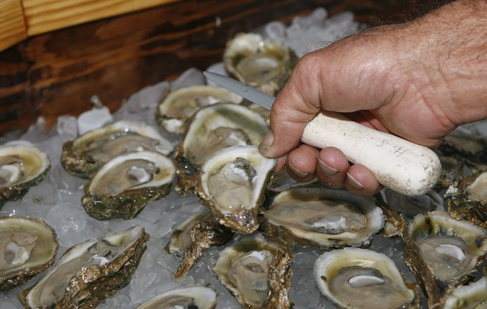 Oysters harvested from B.C. coastal waters on or before Aug. 18, and intended for raw consumption, have been recalled by Health Canada.