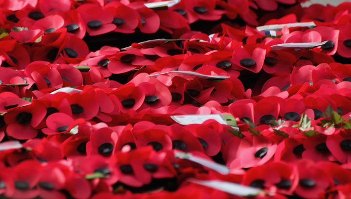Canadian soldier from First World War identified