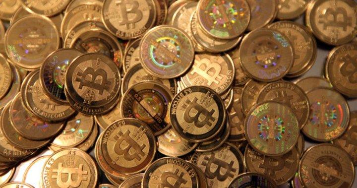 Overstock accepts bitcoins gambar betting beras basah