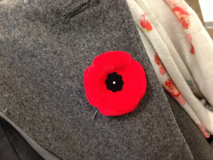 A poppy is worn on a jacket.