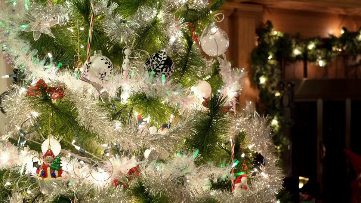 Winnipeg Christmas tree recycling