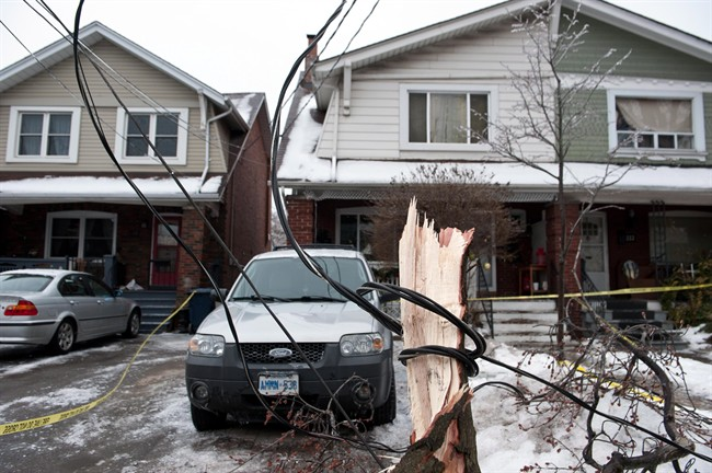 A power line is wrapped around a fallen tree branch on Dawes Road in Scarborough,