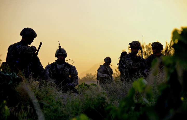 American and Canadian soldiers pick their way through a grapefield at sunrise on Thursday June 2, 2011, for a joint patrol, in Zangabad, Afghanistan.