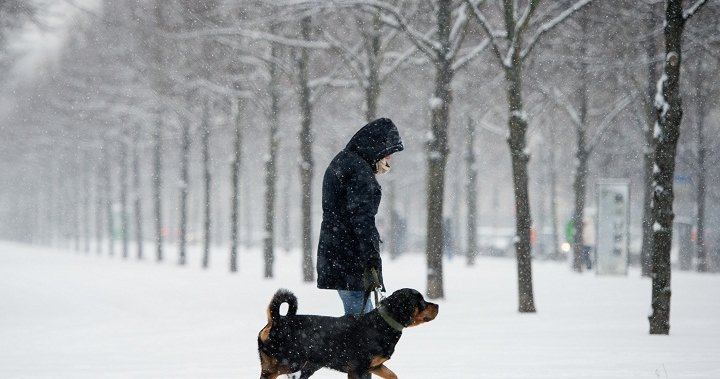 Special weather statement calls for 'significant' winter storm in London, Ont.