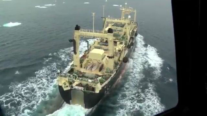 Anti-whaling group Sea Shepherd posted video online of dead whales on board the Japanese whaling ship Nisshin Maru