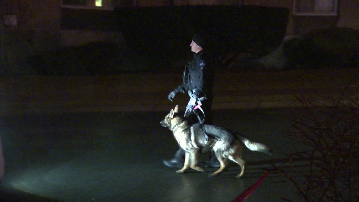 A K9 unit helped police locate a suspect following a foot-chase Monday.