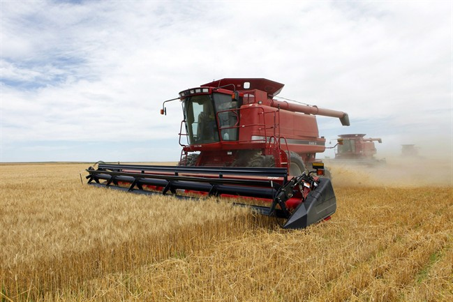 Optimistic outlook for Alberta agriculture - image
