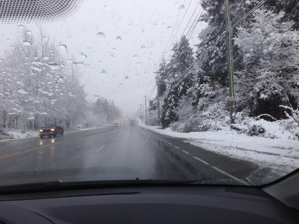 Damp Sunday could still deliver snow for B.C.'s South Coast