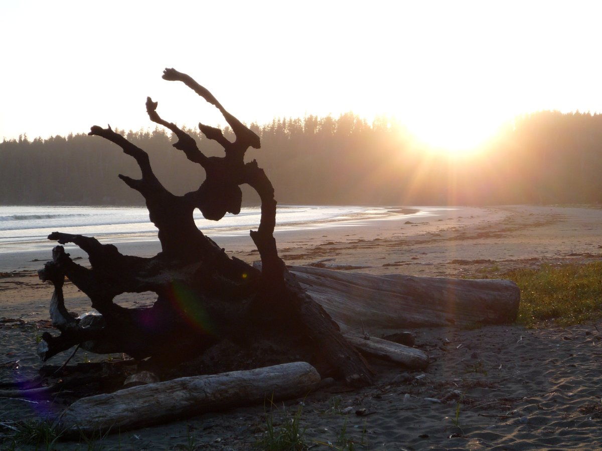 A viewer-submitted photo of Pachena Bay, the picturesque beach that scientists forecast as an epicentre for the next massive earthquake and tsunami.