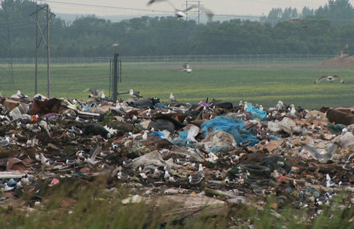 Saskatchewan NDP says leaky Saskatoon landfill a concern, but minister says nearby water quality is OK.
