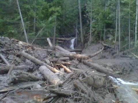 The debris that came down McIntyre Creek.