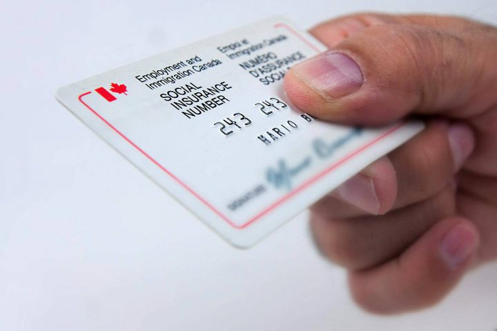 Police asked the Canada Revenue Agency to delay telling the public that 900 social insurance numbers had been stolen from its website.