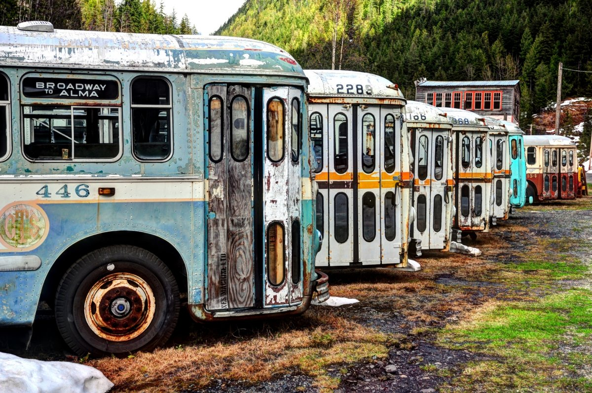 The Vancouver Brill trolley buses have sat in a vacant lot in Sandon, B.C. for over a decade.