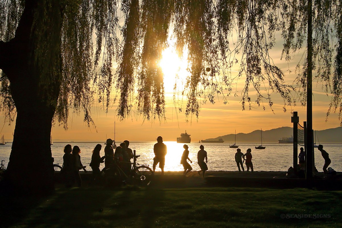 Kits beach has been closed to swimming due to hazardous bacteria levels.