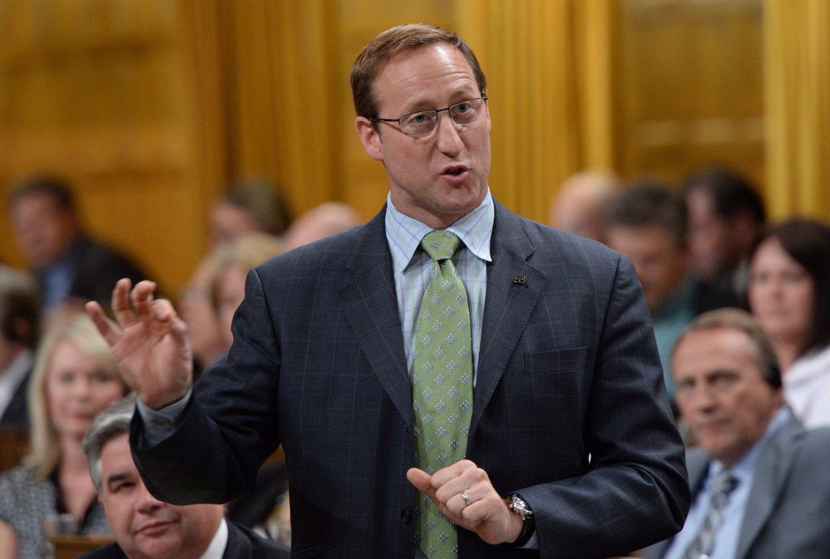 Minister of Justice Peter MacKay stands during question period in the House of Commons on Parliament Hill in Ottawa on Monday, June 16, 2014. THE CANADIAN PRESS/Sean Kilpatrick.
