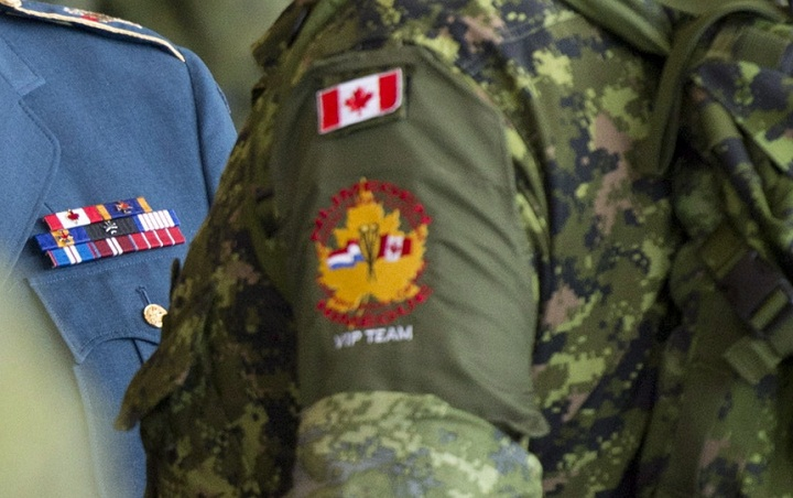 Canadian Armed Forces lapels