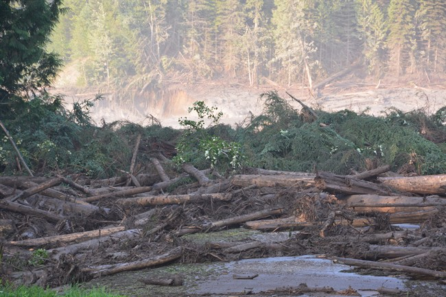 FILE PHOTO: The tailings pond of the Mount Polley mine, southeast of Quesnel, was breached, discharging waste water into Hazeltine Creek on Aug. 4, 2014.
