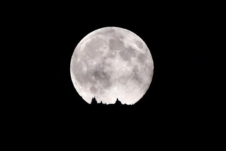 A full moon rises
