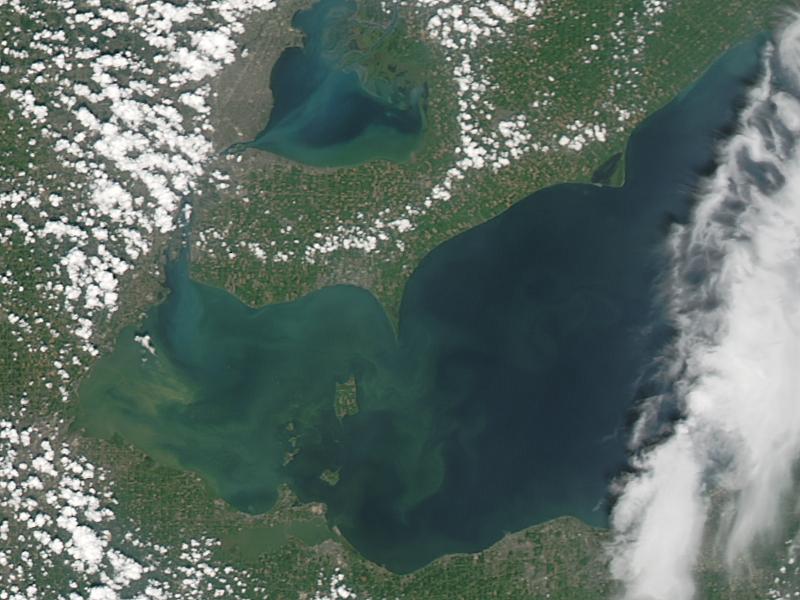 Lake Erie's algae bloom, seen from a satellite photo Aug. 3, 2014.