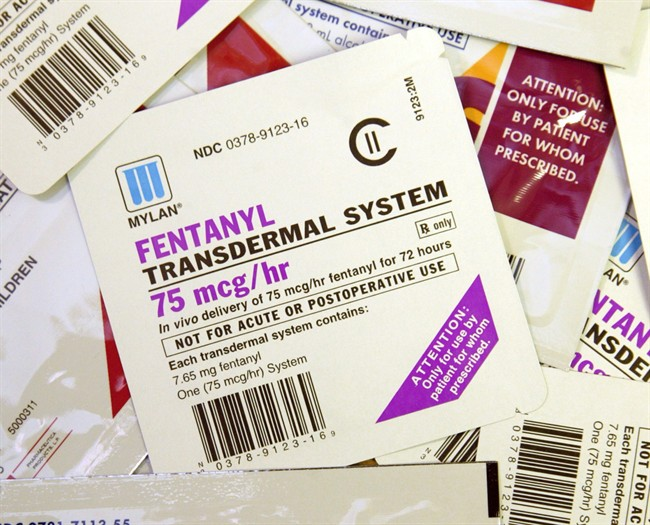 Various brands of Fentanyl patches are displayed in this April 26, 2006 file photo.